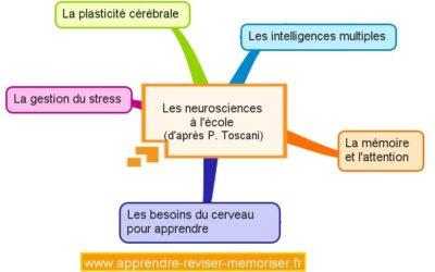 Les neurosciences à l'école: 5 recommandations pour mieux apprendre